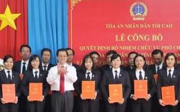 Tòa án nhân dân tối cao bổ nhiệm hàng loạt nhân sự mới