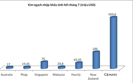 Mỗi ngày người Việt chi hơn 60 tỷ đồng uống sữa ngoại