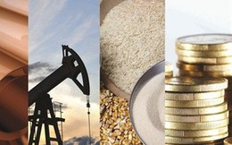 Thị trường ngày 25/8: Giá dầu tăng mạnh trở lại, thép có tuần tồi tệ nhất 2 tháng