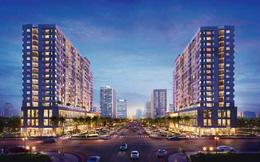 Sức hút bất động sản trên đại lộ đẹp nhất TPHCM
