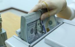 Tỷ giá trung tâm giảm, các ngân hàng vẫn neo USD ở mức cao sáng đầu tuần