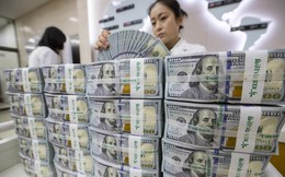"""Tỷ giá trung tâm giảm, USD """"chợ đen"""" lùi về 23.500 đồng"""