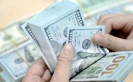 """Siết tín dụng ngoại tệ: Ngân hàng nào đang """"ôm"""" cho vay USD nhiều nhất?"""