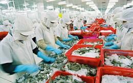 Xuất khẩu cá tra tạo đột phá, khả năng đạt kim ngạch trên 2 tỷ USD