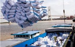 Xuất khẩu gạo Việt: Lắm nỗi truân chuyên