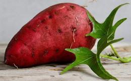 Một củ khoai lang có thể mang lại điều 'thần kỳ', phòng ung thư: Đây là bí quyết ăn đúng!