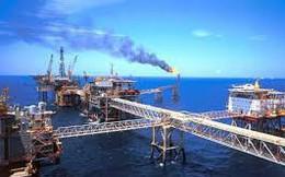 Nhóm dầu khí chờ triển vọng 2019