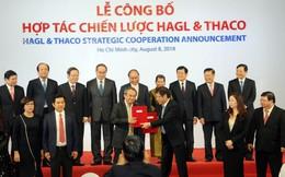 """Đường đi nước bước sau """"cuộc hôn nhân"""" hơn 20.000 tỷ đồng giữa Thaco và HAGL"""