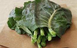 """Từ giảm cân đến giải độc cơ thể, đây là 7 công dụng """"thần dược"""" của loại rau cải phổ biến ở Tây Ban Nha và đang được trồng nhiều ở Đà Lạt những năm gần đây"""