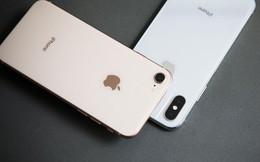 Tổng hợp thông số bộ ba iPhone vừa ra mắt cho anh em bỏ lỡ sự kiện Apple đêm qua