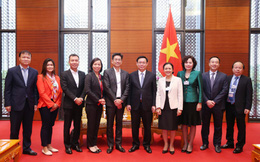 Phó Thủ tướng đề nghị HSBC hỗ trợ trong việc xử lý nợ xấu, tái cơ cấu các định chế tài chính