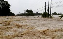 Philippines có thể phải tăng mạnh nhập gạo vì siêu bão Mangkhut