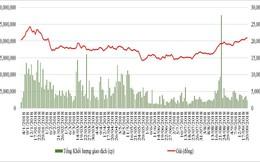 Cổ phiếu SBT đang được định giá như thế nào dưới góc nhìn của các công ty chứng khoán (kỳ 1)