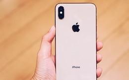 iPhone XS Max đầu tiên về Việt Nam trước cả khi Apple mở bán, giá từ 33,9 triệu đồng