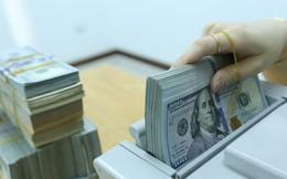 USD tự do lại rục rịch tăng
