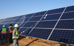 Bình Thuận tiếp tục có thêm nhà máy điện mặt trời gần 1.000 tỷ đồng