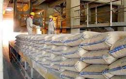 Xuất khẩu xi măng tăng mạnh