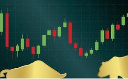 Các chuyên gia và nhà đầu tư tin giá vàng sẽ phục hồi tuần tới