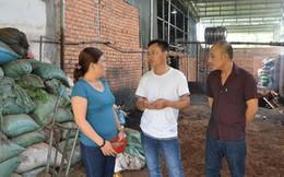 Kết luận điều tra vụ hồ tiêu trộn pin ở Đắk Nông