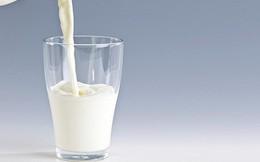Uống sữa lúc nào là tốt nhất: 4 điều bạn nên biết để việc uống sữa có được lợi ích lớn hơn