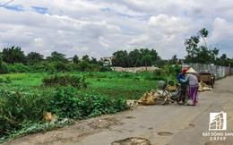 Bà Rịa - Vũng Tàu xem xét lại mức giá đất nông nghiệp tính bồi thường
