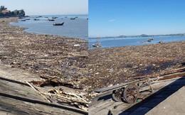 Bờ biển tràn ngập gỗ, củi và rác sau 1 đêm