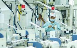 """""""Cất cánh"""" trên thị trường quốc tế trước khi phục vụ thị trường nội địa – Câu chuyện thành công của nhiều doanh nghiệp Việt"""