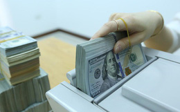 """Tỷ giá trung tâm """"bất động"""", USD ngân hàng tăng giảm trái chiều"""