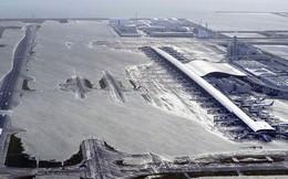 Chưa có người Việt bị ảnh hưởng do bão ở Osaka, Nhật Bản