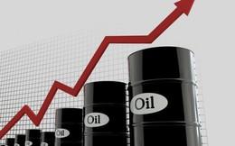 Giá xăng dầu ở nhiều quốc gia đang lên cao