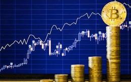 Hậu quả đau đớn thế nào khi bong bóng bitcoin cuối cùng sẽ vỡ?