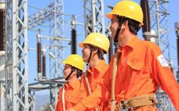 PVPower tiếp tục muốn bán hết hơn 3,5 triệu cổ phần Điện Tây Bắc