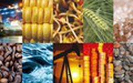Nhìn lại thị trường hàng hóa 2017: Giá thép, đồng tăng mạnh; nông sản mất giá