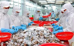 Xuất khẩu thuỷ sản lập kỷ lục 8,3 tỷ USD