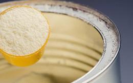 Kiểm soát chặt các lô sữa của Pháp quá cảnh bị nhiễm khuẩn Salmonella Agona