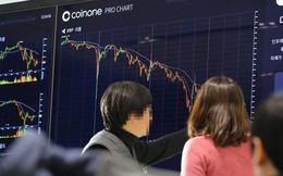 Giới đầu tư tiền ảo Hàn Quốc đòi dừng kế hoạch cấm giao dịch
