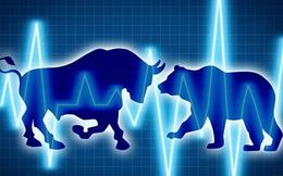 HAG, HNG, KPF, NVT, PLX, NKG, VC9, QBS, BTS, SLR: Thông tin giao dịch lượng lớn cổ phiếu