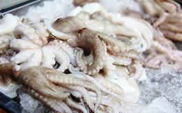 Mỹ nhập khẩu nhiều mực, bạch tuộc từ Việt Nam