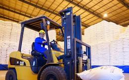 Tạm nhập tái xuất mặt hàng đường: Lợi ít hại nhiều!