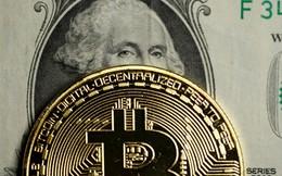 Bitcoin rớt giá thảm: Phải chăng đó chỉ mới là khởi đầu cho một kết thúc?