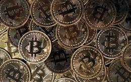 Tại quốc đảo này, bạn có thể dùng bitcoin để nhập tịch