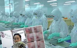 Giá nhân dân tệ xuống thấp tác động đến Việt Nam ra sao?