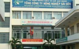 Kỷ luật cảnh cáo Kế toán trưởng Tổng Công ty Nông nghiệp Sài Gòn