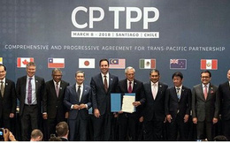 Thực thi Hiệp định CPTPP cần sự gấp rút của các Bộ, ngành