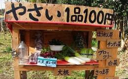 4 khoảnh khắc rất đỗi đời thường nhưng đủ để thấy người Nhật hiếu khách nhất quả đất luôn