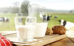 Người uống sữa hàng ngày so với người không uống sữa, sức khỏe có khác nhau nhiều không?