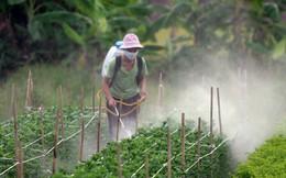 Việt Nam nằm trong nhóm nước bị cảnh báo về tồn dư thuốc BVTV