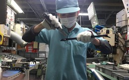Hàng ngàn người Việt trước cơ hội làm việc lâu dài ở Nhật