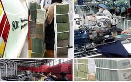 TS Nguyễn Đình Cung: Ghế tại Siêu Ủy ban không phải ghế bổng lộc