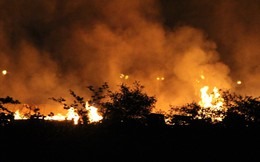 Cháy lớn tại nhà xưởng sản xuất pallet gỗ tại Bình Dương
